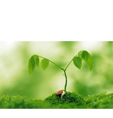 生态雷火电竞开户质量改善解决方案与规划设计